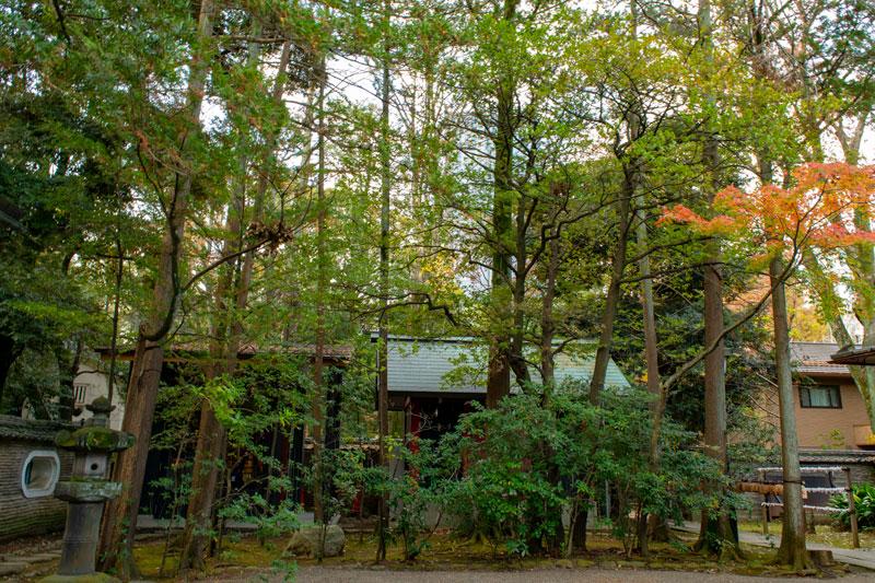赤坂氷川神社の境内