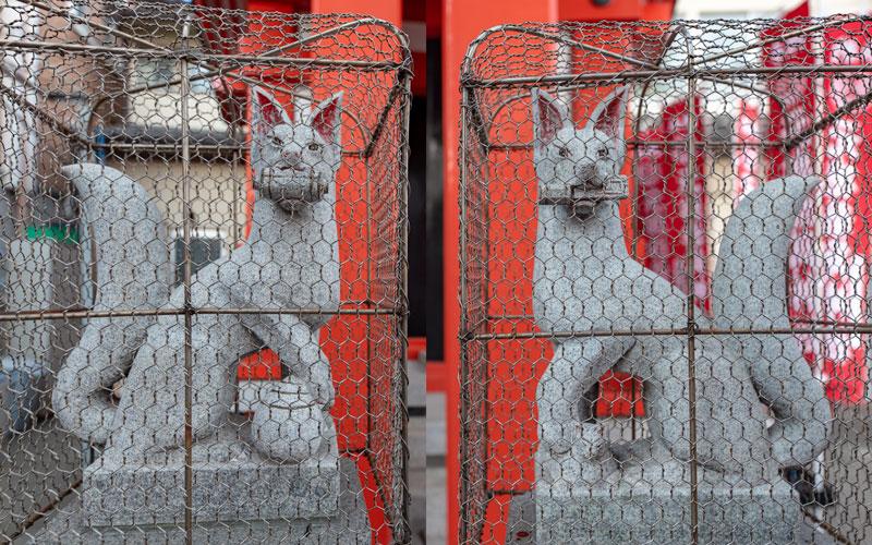 元徳稲荷神社の狐