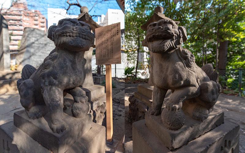 金王八幡宮の金王丸御影堂の狛犬