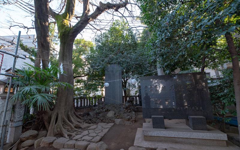 神明氷川神社の御神木