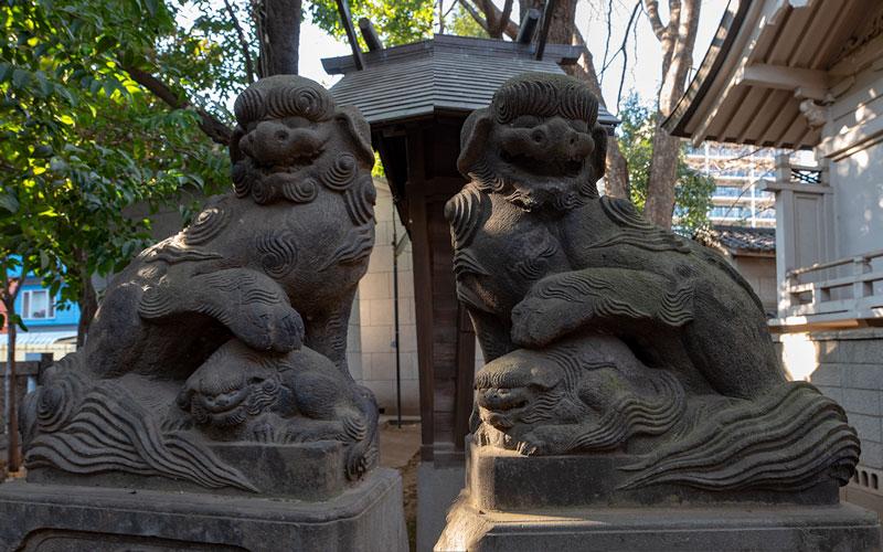 神明氷川神社の末社津島神社の狛犬