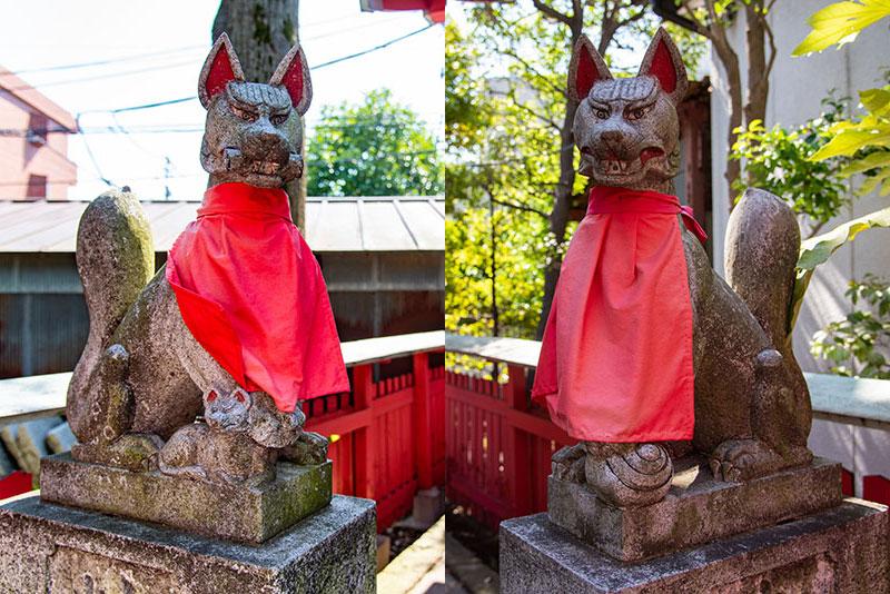 新井天神北野神社 稲荷神社の狐