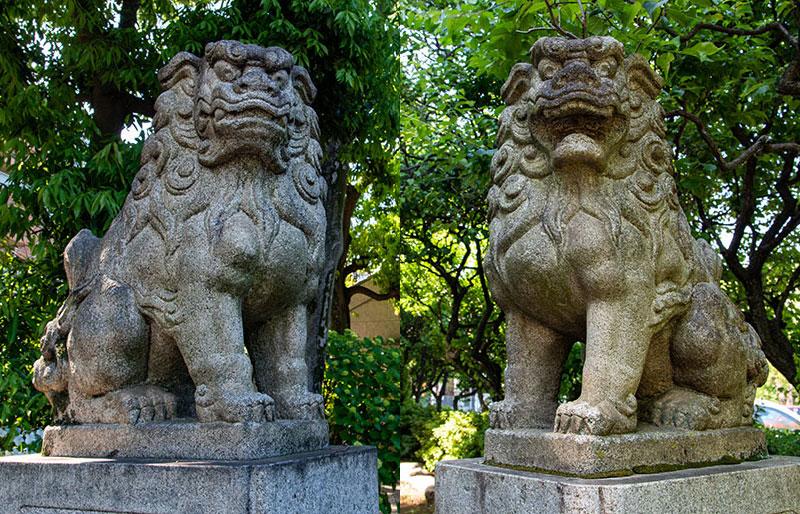 新井天神北野神社 鳥居の狛犬