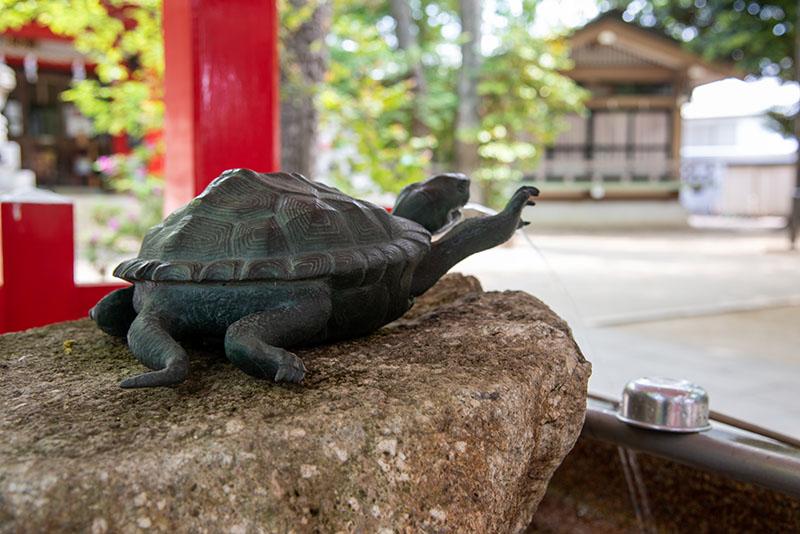 六所神社の手水舎の亀2