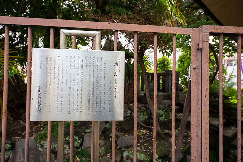 吾嬬神社狛犬