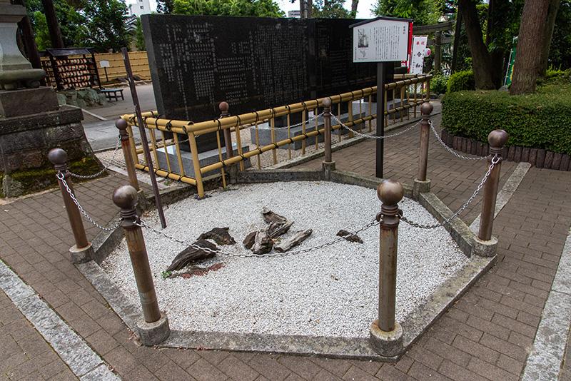 沼袋氷川神社 道灌杉