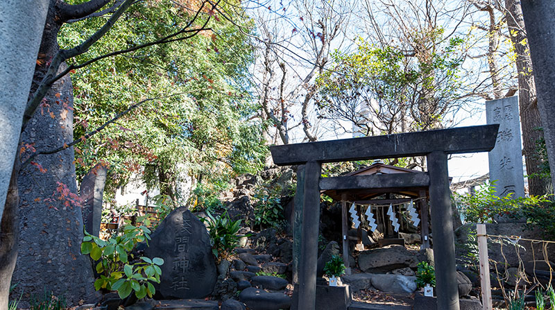 素盞雄神社 浅間神社