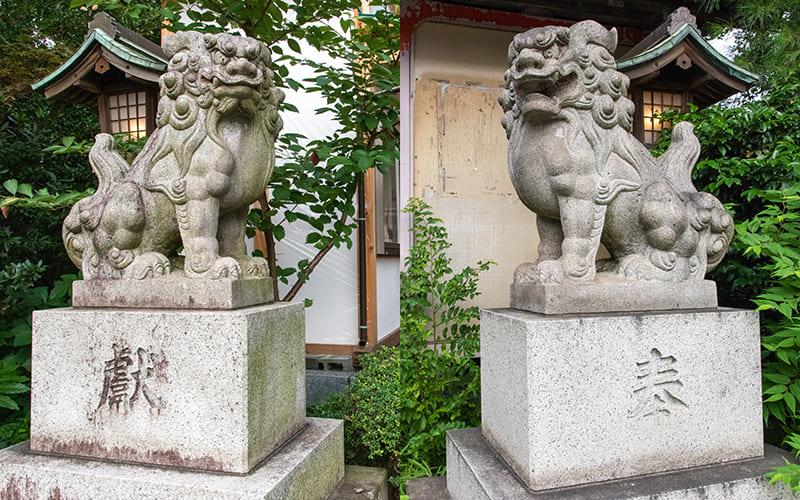 小岩神社 狛犬