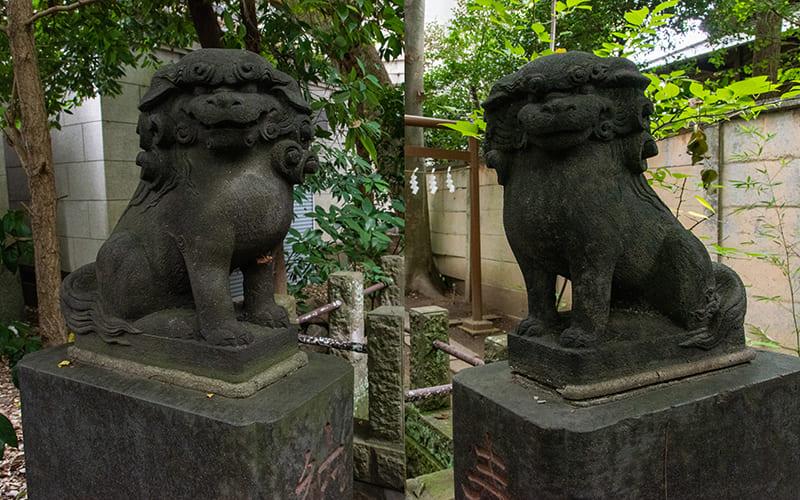 小岩神社 和霊神社狛犬