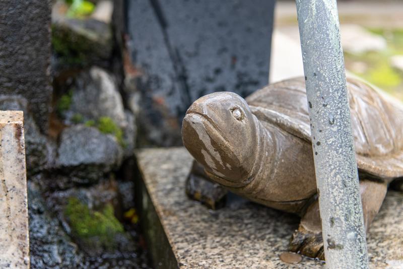 品川神社 手水舎亀