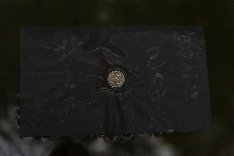 八重垣神社 鏡の池占い