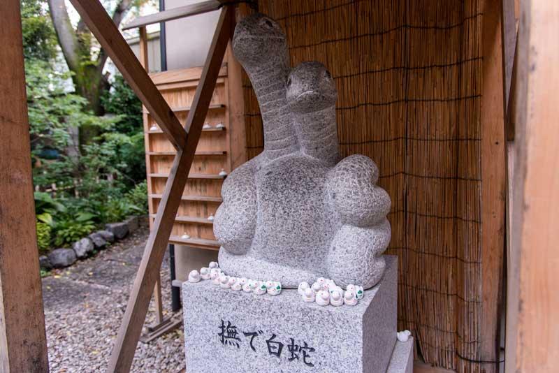 蛇窪神社 天祖神社 撫で白蛇