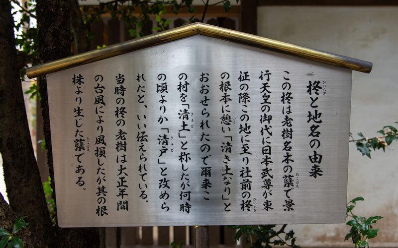 清瀬市 日枝神社 柊案内