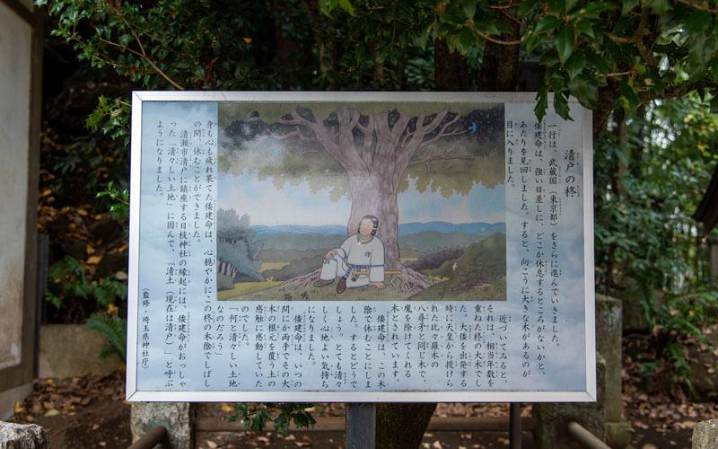 清瀬市 日枝神社 清戸の柊