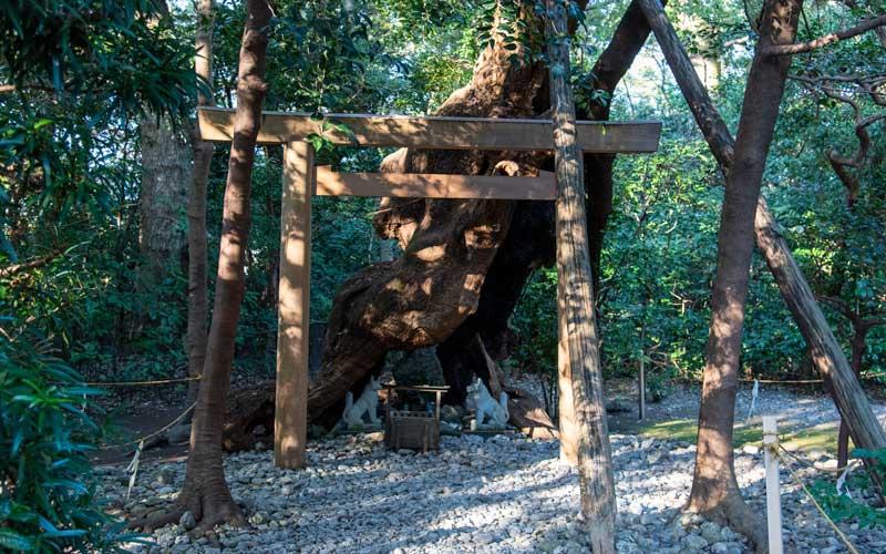 月夜見宮 稲荷神社