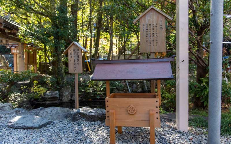 猿田彦神社 子宝池