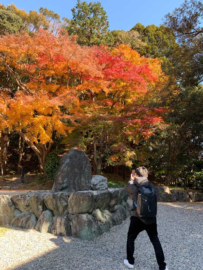 猿田彦神社 紅葉