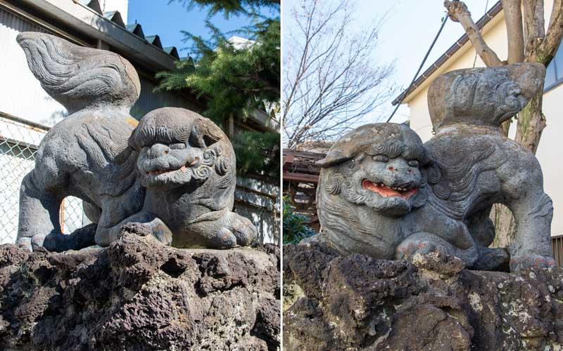 亀高神社 狛犬