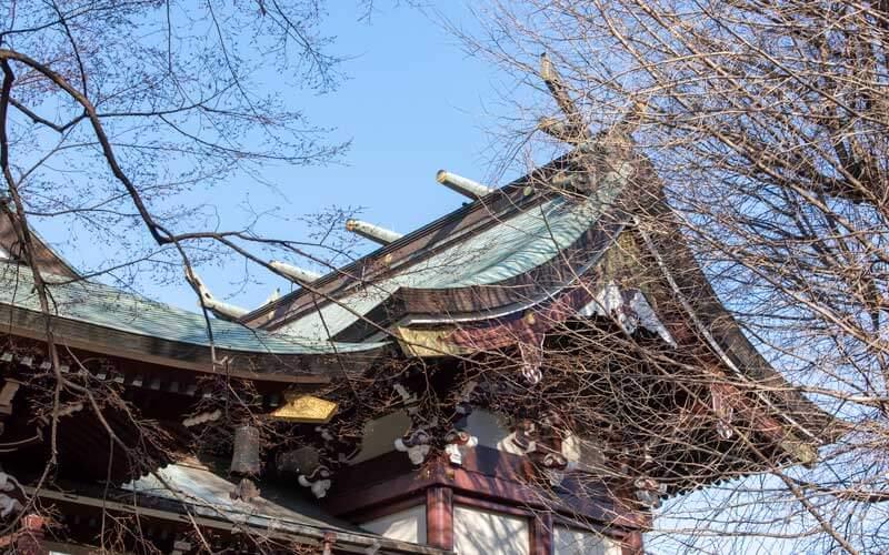 諏訪神社 本殿鰹木