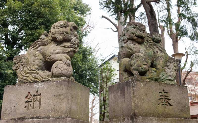 天沼八幡神社 狛犬