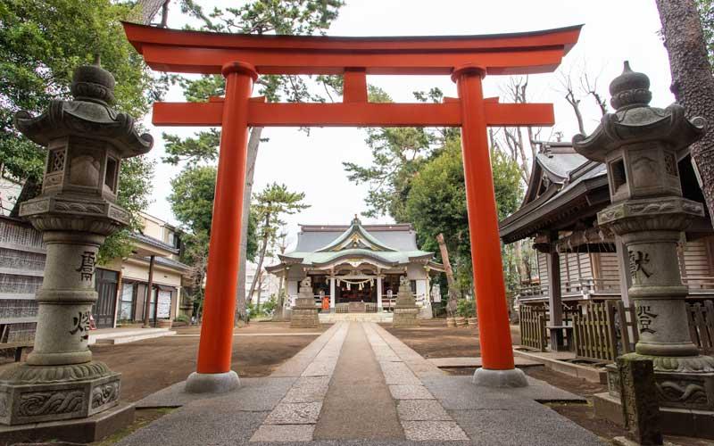 天沼八幡神社 鳥居と参道