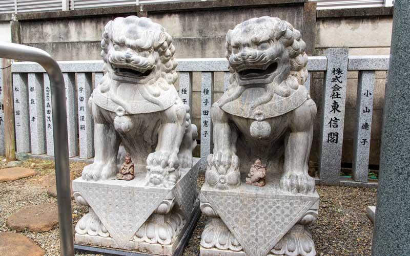 荻窪白山神社 狛犬