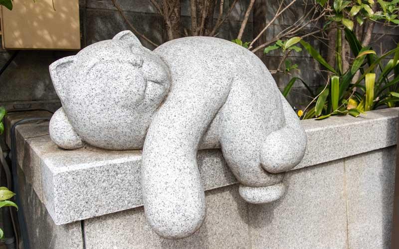 荻窪白山神社 お猫さま