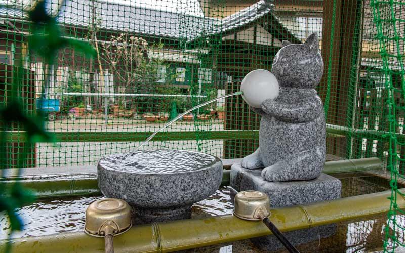 荻窪白山神社 手水舎お猫さま
