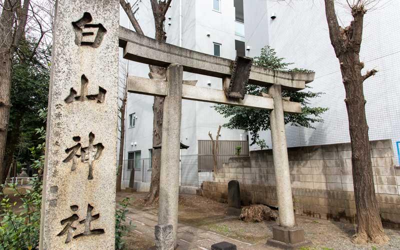荻窪白山神社 鳥居